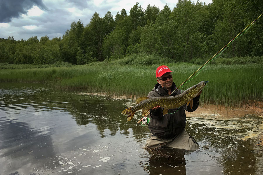 Bernd Ziesche Fly fishing river Glomma at Kvennan Fly Fishing for pike